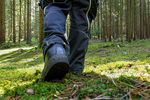 Jak wyselekcjonować buty dla pracowników?