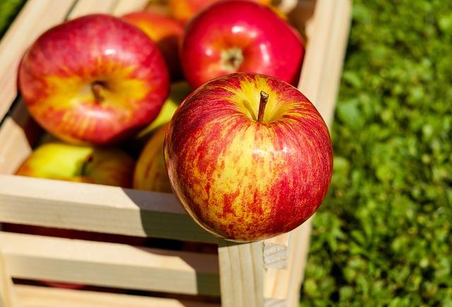 Jabłka i najważniejsze zasady ich przechowywania